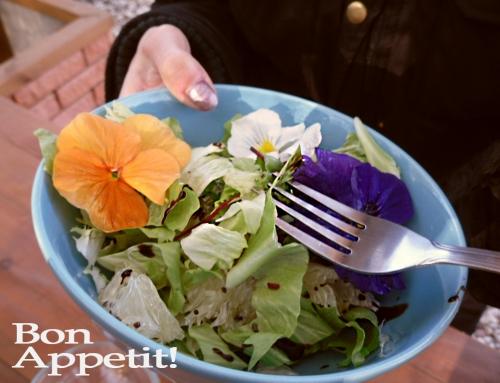 Árvácskás saláta, tyúkhúros főzelék- Ehető virágok a fűszeresben