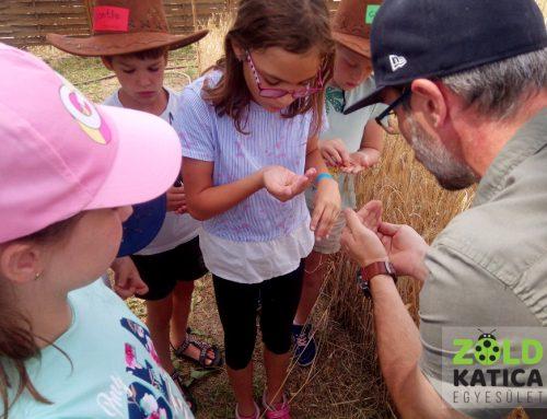 Fitopedagógiai és madárismereti foglalkozás a Zöld Katica Tanösvényen
